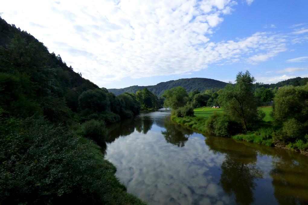 Sazava nehri